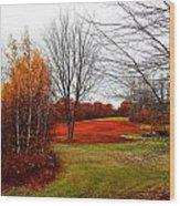 Red Field Autumn Wood Print
