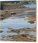 Red Flat At Low Tide Wood Print