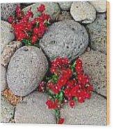 Red Flower In Rocks Wood Print
