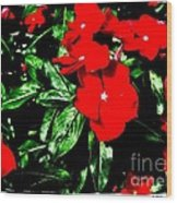 Red Flowers Among Green Leaves Wood Print
