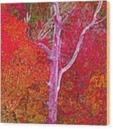 Pink Tree In A  Red Forest Wood Print
