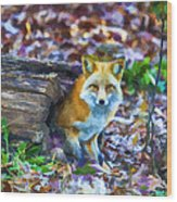 Red Fox At Home Wood Print