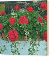 Red Geranium 1 Wood Print