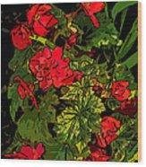 Red Geranium Line Art Wood Print