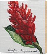 Red Ginger Poem Wood Print