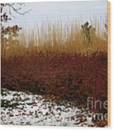 Red Gold Hedge Wood Print