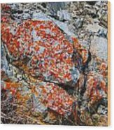 Red Growth Rock Wood Print