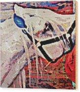 Red Hay Bag Wood Print