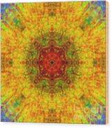 Red Heart Sun Rainbow Mandala Wood Print