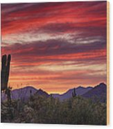 Red Hot Sonoran Sunset Wood Print