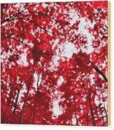 Red I Wood Print