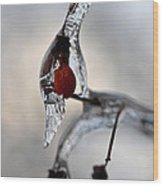 Red Ice Wood Print