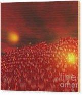 Red Ice Mountain Wood Print
