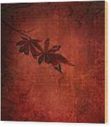 Red Japanese Maple On Red Wood Print
