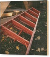 Red Ladder Wood Print