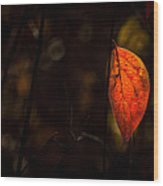 Red Leaf 2 Wood Print