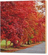 Red Leaf Road Wood Print