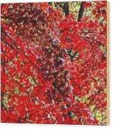 Red Leaves 3 Wood Print