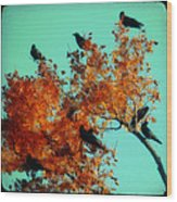 Red Leaves Among The Ravens Wood Print