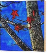 Red Leaves Blue Sky In Autumn Wood Print