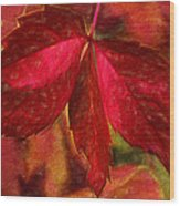 Red Leaves - Cave Dwelle Wood Print