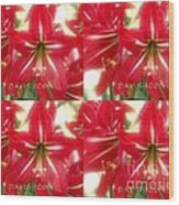 Red Lily Four Wood Print