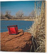 Red Lunch Bag Wood Print