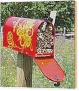 Red Mailbox Wood Print