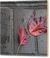 Red Maple Bricks Wood Print