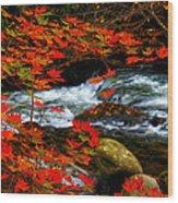 Red Maple Stream  Wood Print