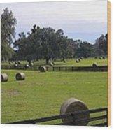 Red Oak Landscape Wood Print