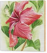 Red Orange Hibiscus Wood Print