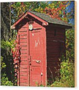 Red Outhouse Wood Print by Paul Ward