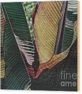Red Palm Leaves Wood Print