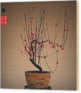 Red Plum Blossoms Wood Print
