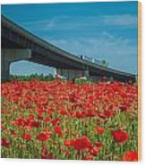 Red Poppy Field Near Highway Road Wood Print