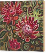 Red Proteas Wood Print by Jen Norton