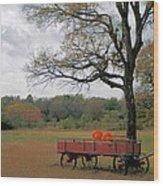 Red Pumpkin Wagon Wood Print by Paulette Maffucci