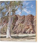 Red Ridge Wood Print by Lee Stickels