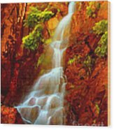 Red River Falls  Wood Print