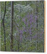 Red River Gorge Spring  Wood Print