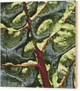 Red River Through Green Hills Wood Print