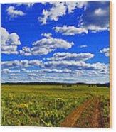 Red Road Wood Print