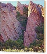 Red Rock Autumn Wood Print