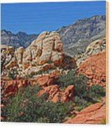 Red Rock Canyon 5 Wood Print