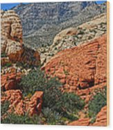 Red Rock Canyon 6 Wood Print