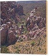Red Rock Canyon Iv Wood Print