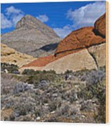 Red Rock Canyon Nevada Wood Print
