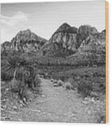 Red Rock Canyon Trailhead Black And White Wood Print