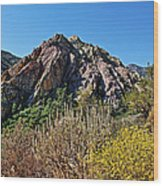 Red Rock Canyon With Foliage Wood Print